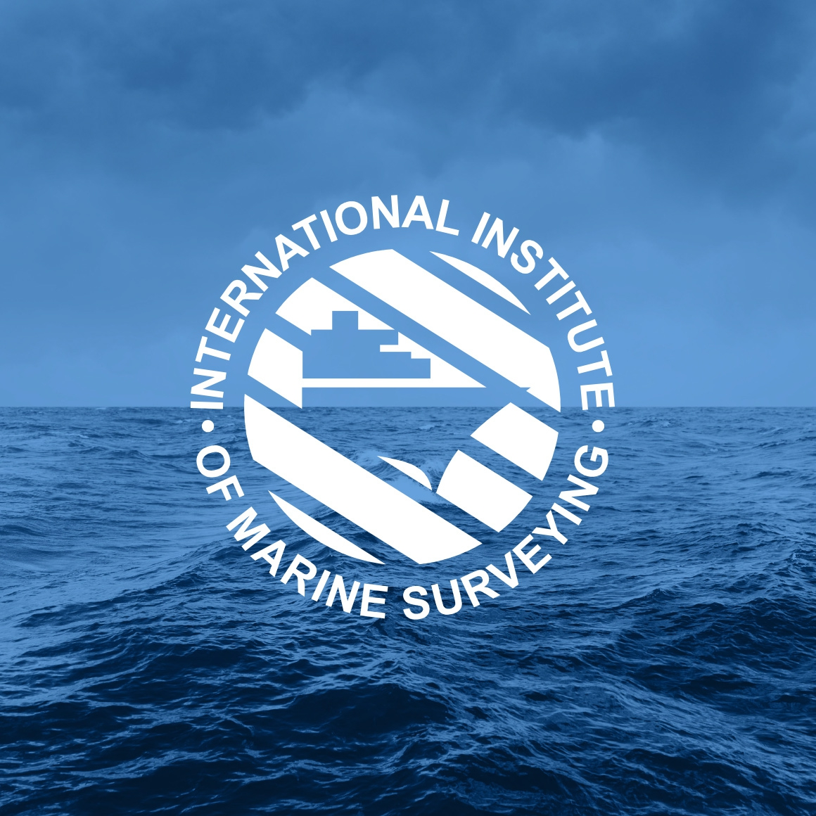 International Institute Of Marine Surveying